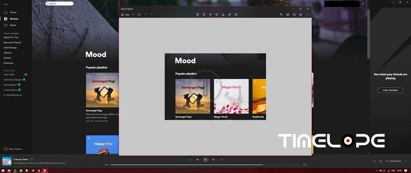 Step 3 How to Screenshot of Desktop PC Laptop Screen
