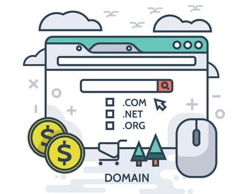 Understanding Domain