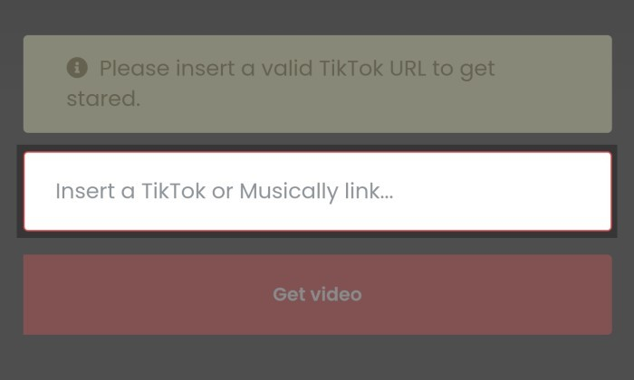 How to Download TikTok Without Watermark Without Application 3