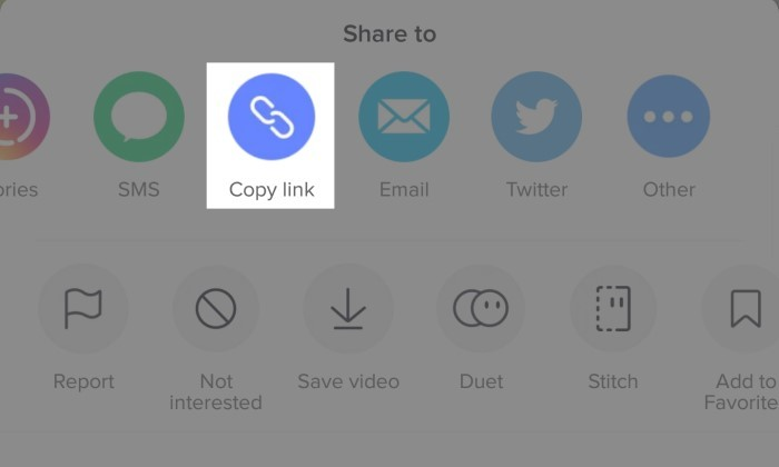 How to Download TikTok Without Watermark Without Application 2