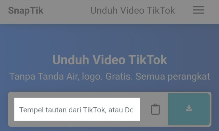 How to Download TikTok Without Watermark Without Application 8