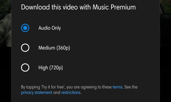 How To Download Songs From YouTube 4
